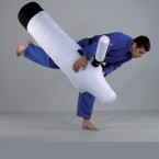 manechin judo