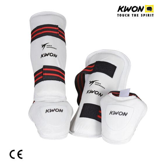 tibiera si botosei taekwondo