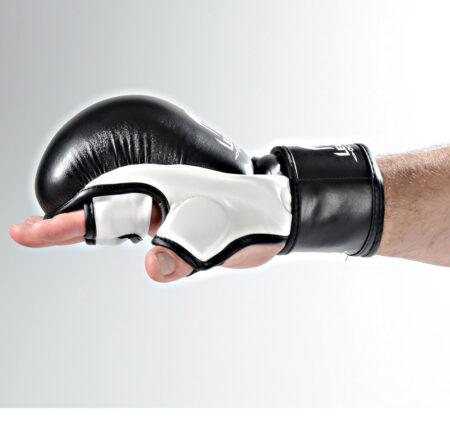 manusi MMA antrenament Legion Octagon